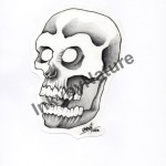 Black and Gray Skull Lark Tattoo Albany Ben Lambert