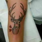 lark albany buck deer kirby
