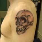 skull lark tattoo albany ny