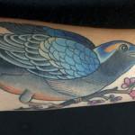 38_bird_mattcellis