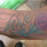 color love albany ny