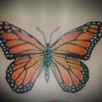 Lark Tattoo Albany NY Tom Martin Tbone Monarch Butterfly Backpiece