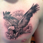 peewee_anthonysinerco_blackandgray_eagle_baldeagle_realistic
