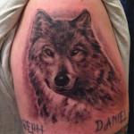 peewee_anthonysinerco_blackandgray_wolf_portrait