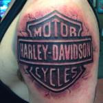 peewee_anthonysinerco_harley_motorcycle_harleydavidson