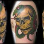 skull_snake-500x242