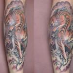 tiger-500x387