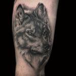 wolf , wolftattoo, animaltattoo, animalportrait, animalportraittattoo, realistictattoo, bng, bngtattoo, blackandgreytattoo, blackandgraytattoo, tattoo, tattoos, tat, tats, tatts, tatted, tattedup, tattoist, tattooed, tattoooftheday, inked, inkedup, ink, tattoooftheday, amazingink, bodyart, tattooig, tattoosofinstagram, instatats, larktattoo, larktattoos, larktattoowestbury, westbury, longisland, NY, NewYork, usa, art
