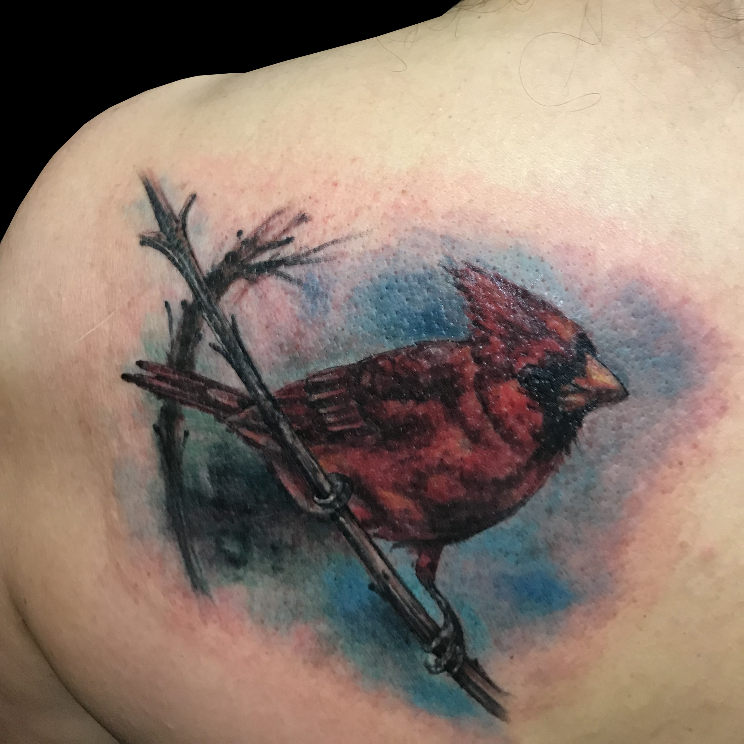 Peewee Lark Tattoo Lark Tattoo