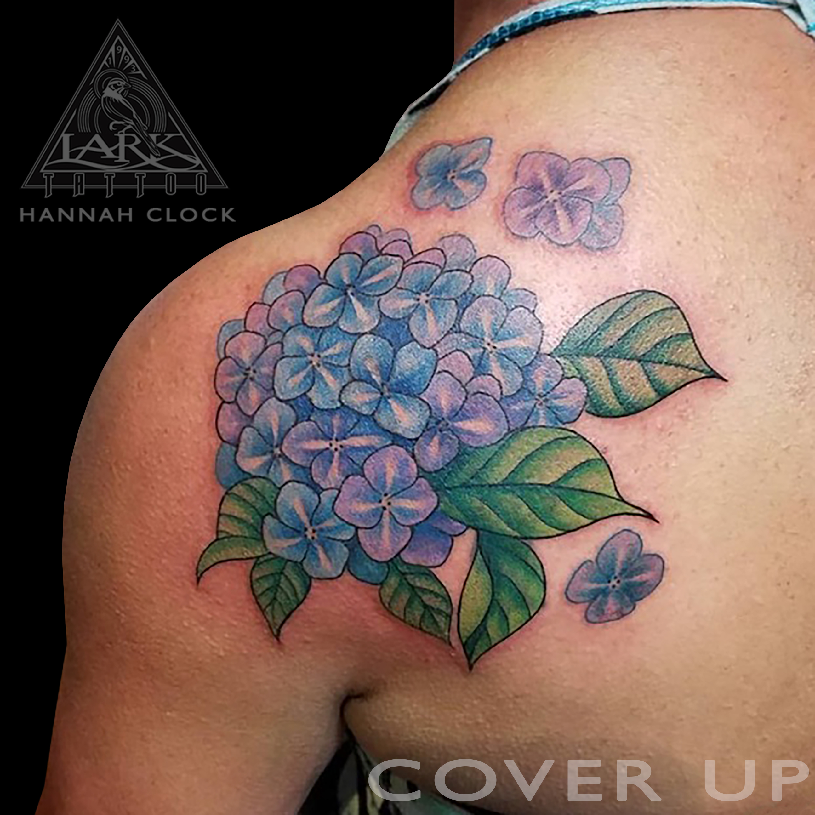 #hydrangea #hydrangeatattoo #coverup #coveruptattoo #flower #flowertattoo #colortattoo #ladytattooer #femaleartist #femaletattooer #femaletattooartist #tattoo #tattoos #tat #tats #tatts #tatted #tattedup #tattoist #tattooed #inked #inkedup #ink #tattoooftheday #amazingink #bodyart #tattooig #tattoosofinstagram #instatats #larktattoo #larktattoos #larktattoowestbury #westbury #longisland #NY #NewYork #usa #art