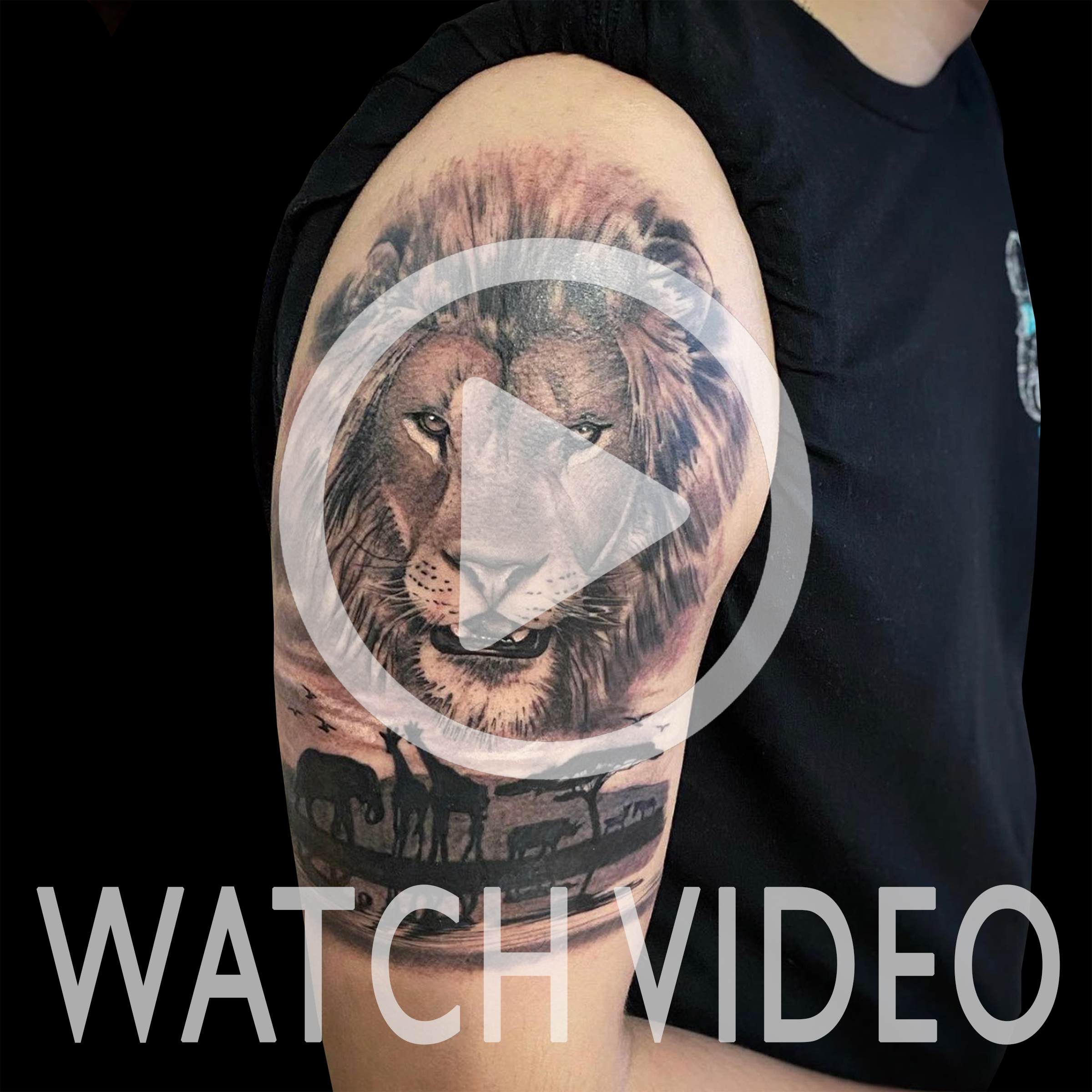 LarkTattoo, KevinSoomai, KevinSoomaiLarkTattoo, Tattoo, Lion, LionTattoo, Giraffe, GiraffeTattoo, Elephant, ElephantTattoo, Rhino, RhinoTattoo, Zebra, ZebraTattoo, Safari, SafariTattoo, Animal, AnimalTattoo, Nature, NatureTattoo, TattooHalfSleeve, HalfSleeve, HalfSleeveTattoo, Realism, RealismTattoo, Realistic, RealisticTattoo, BNG, BNGTattoo, BlackAndGray, BlackAndGrayTattoo, BlackAndGrey, BlackAndGreyTattoo, BlackAndGrayRealism, BlackAndGrayRealismTattoo, BlackAndGreyRealism, BlackAndGreyRealismTattoo, Tattoos , TattooArtist, Tattoist, Tattooer, LongIslandTattooArtist, LongIslandTattooer, LongIslandTattoo, TattooOfTheDay, Tat, Tats, Tatts, Tatted, Inked, Ink, TattooInk, AmazingInk, AmazingTattoo, BodyArt, LarkTattooWestbury, Westbury, LongIsland, NY, NewYork, USA, Art, Tattedup, InkedUp, LarkTattoos