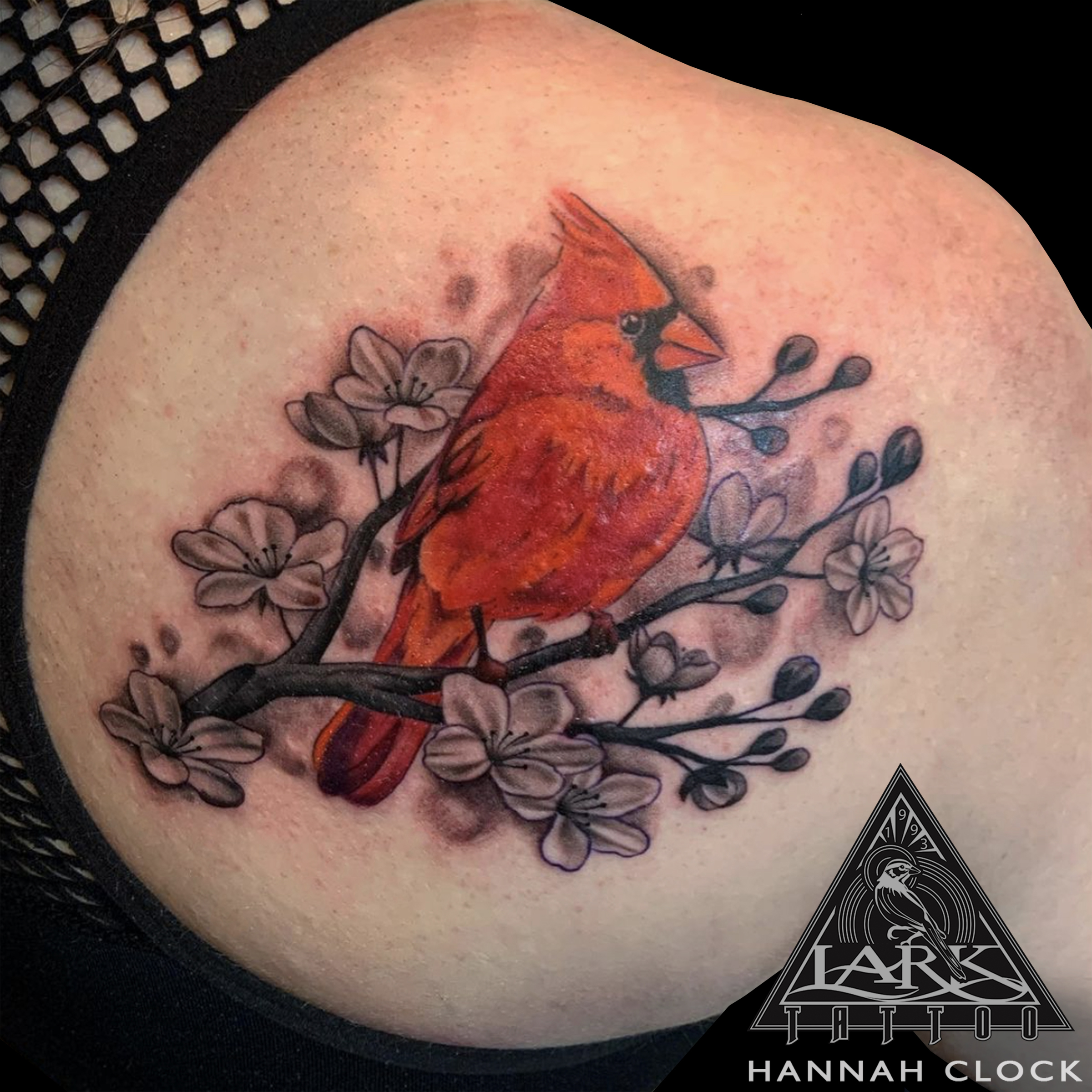 #LarkTattoo #HannahClock #HannahClockLarkTattoo #FemaleTattooer #FemaleArtist #LadyTattooer #Tattoo #Tattoos #Cardinal #CardinalTattoo #Bird #BirdTattoo #ColorTattoo #CherryBlossom #CherryBlossomTattoo #SolidInk #Feminine #FeminineTattoo #BeautifulTattoo #TattooArtist #Tattoist #Tattooer #LongIslandTattooArtist #LongIslandTattooer #LongIslandTattoo #TattooOfTheDay #Tat #Tats #Tatts #Tatted #Inked #Ink #TattooInk #AmazingInk #AmazingTattoo #BodyArt #LarkTattooWestbury #Westbury #LongIsland #NY #NewYork #USA #Art #Tattedup #InkedUp #LarkTattoos