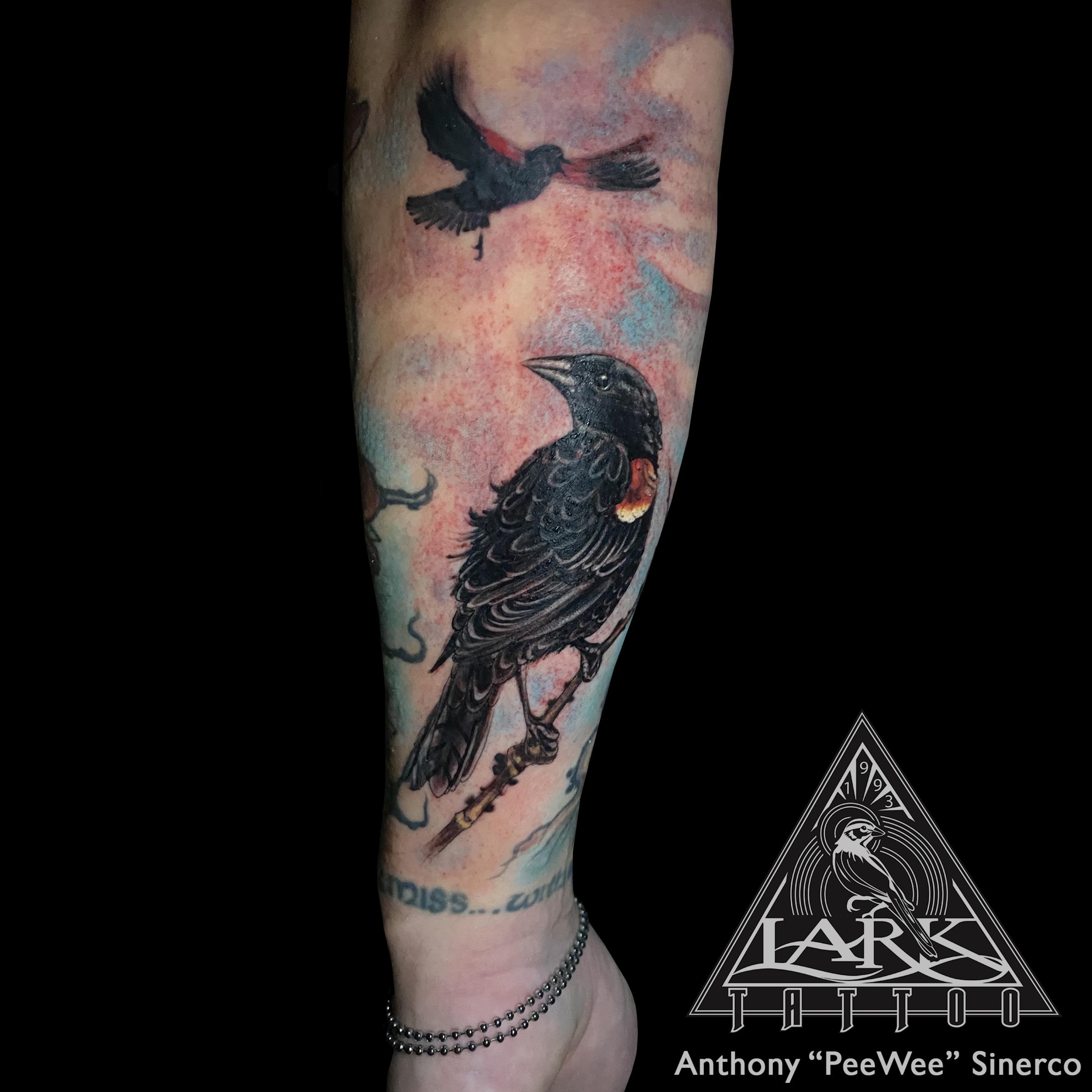 LarkTattoo, PeeWee, PeeWeeLarkTattoo, AnthonyPeeWeeSinerco, AnthonySinerco, Tattoo, Tattoos, Bird, BirdTattoo, Animal, AnimalTattoo, Nature, NatureTattoo, RedWingedBlackbird, RedWingedBlackbirdTattoo, Blackbird, BlackbirdTattoo, AgelaiusPhoeniceus, AgelaiusPhoeniceusTattoo, ColorTattoo, TattooArtist, Tattoist, Tattooer, LongIslandTattooArtist, LongIslandTattooer, LongIslandTattoo, TattooOfTheDay, LarkTattooWestbury, Westbury, LongIsland, Tat, Tats, Tatts, Tatted, Inked, Ink, TattooInk, AmazingInk, AmazingTattoo, BodyArt , NY, NewYork, USA, Art, Tattedup, InkedUp, LarkTattoos