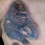LarkTattoo, PeeWee, PeeWeeLarkTattoo, AnthonyPeeWeeSinerco, AnthonySinerco, Tattoo, Tattoos, Gorilla, GorillaTattoo, Silverback, SilverbackTattoo, SilverbackGorilla, SilverbackGorillaTattoo, AnimalTattoo, Wildlife, WildlifeTattoo, Realism, RealismTattoo, Realistic, RealisticTattoo, ChestTattoo, TattooArtist, Tattoist, Tattooer, LongIslandTattooArtist, LongIslandTattooer, LongIslandTattoo, TattooOfTheDay, Tat, Tats, Tatts, Tatted, Inked, Ink, TattooInk, AmazingInk, AmazingTattoo, BodyArt, LarkTattooWestbury, Westbury, LongIsland, NY, NewYork, USA, Art, Tattedup, InkedUp, LarkTattoos